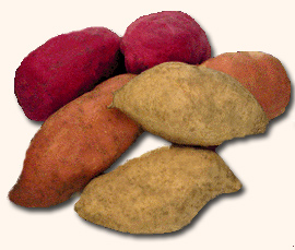Sweet potatoes! - Survivalist Forum